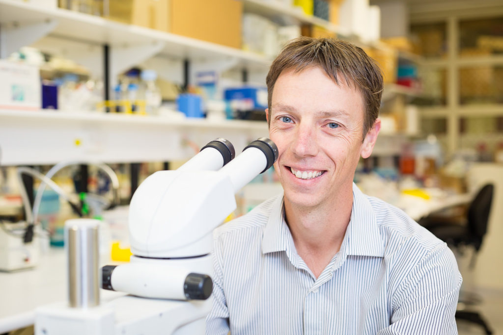 The RAH Research Institute incorporates the Hanson Institute, SA Pathology and the Centre for Cancer Biology and has been established to profile all medical research projects conducted at or in partnership with the RAH.